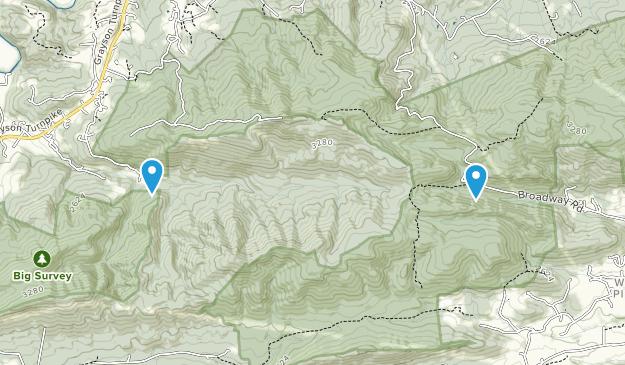 West Piney, Virginia Map