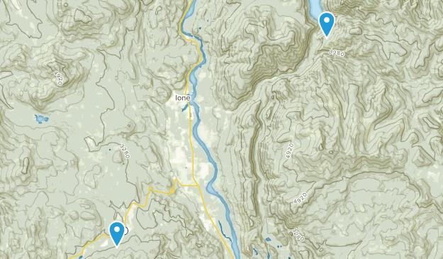 Ione, Washington Map