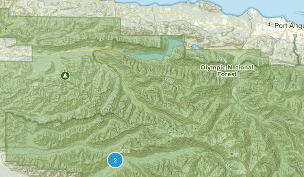 Joyce, Washington Map