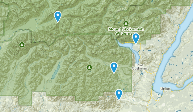 Lake Cushman, Washington Map
