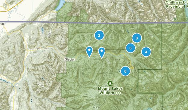 Maple Falls, Washington Map