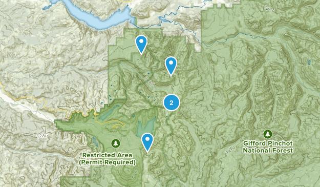 Morton, Washington Map
