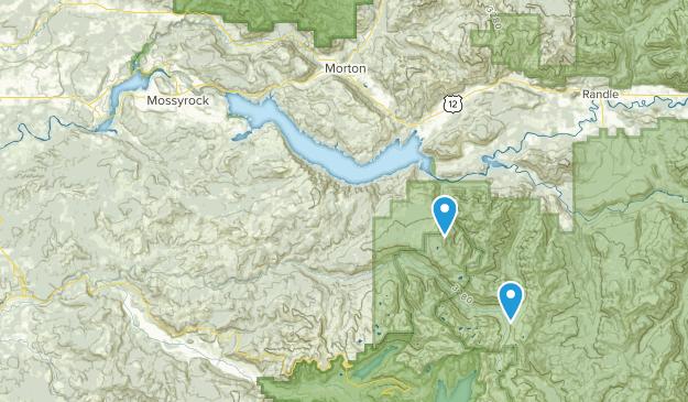 Mossyrock, Washington Map