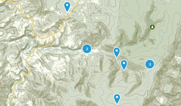 Dryfork, West Virginia Map