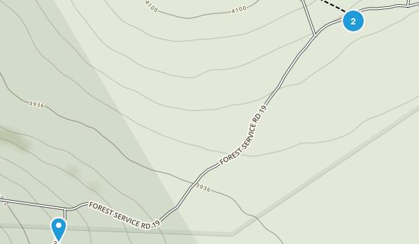 Laneville, West Virginia Map