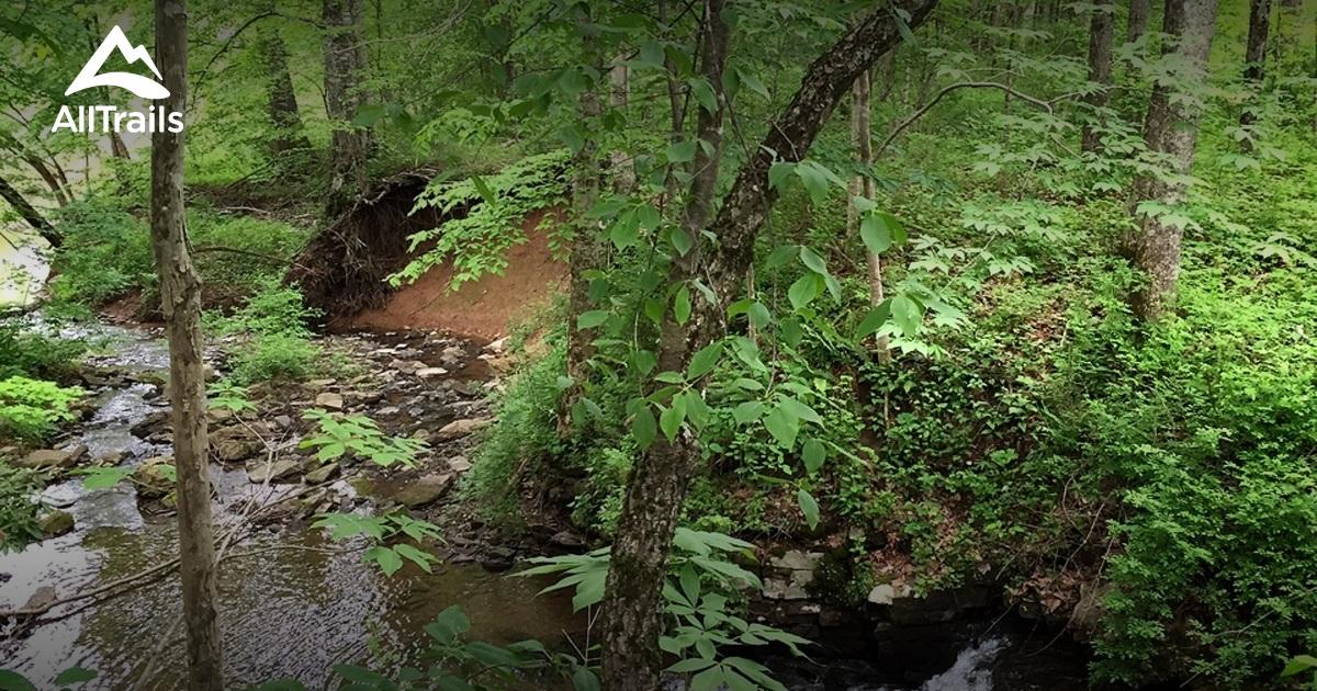 The Best Campground In West Virginia