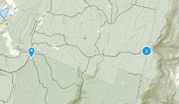 Parsons, West Virginia Map