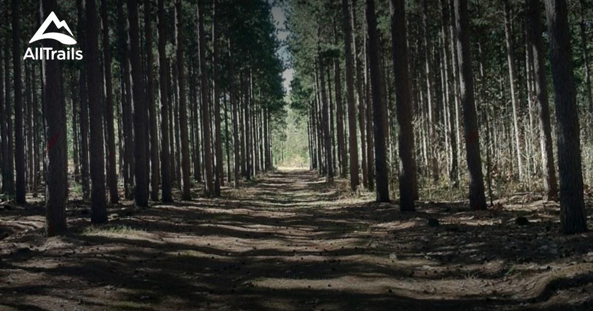 Best Trails Near Black River Falls Wisconsin Alltrails