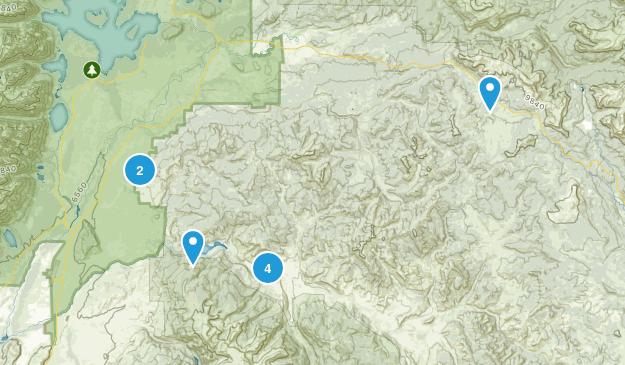 Kelly, Wyoming Map