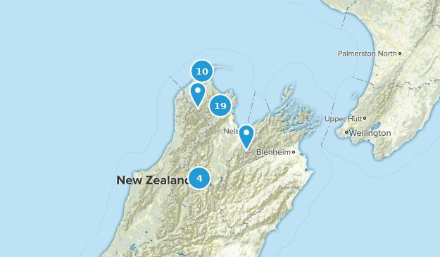 Tasman, New Zealand Map