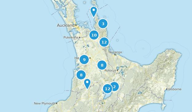 Waikato, New Zealand Map