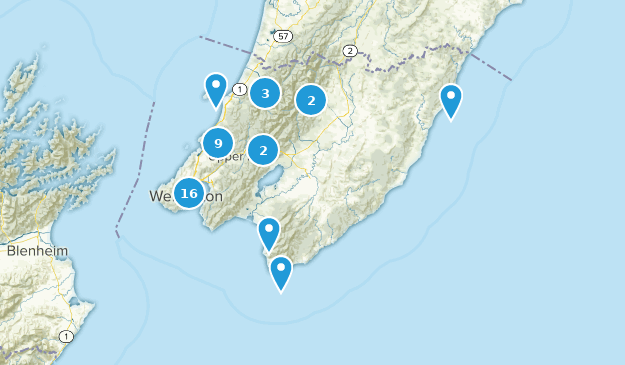 Wellington, New Zealand Map