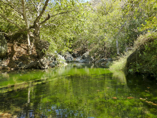 Richitis Gorge Protected Area