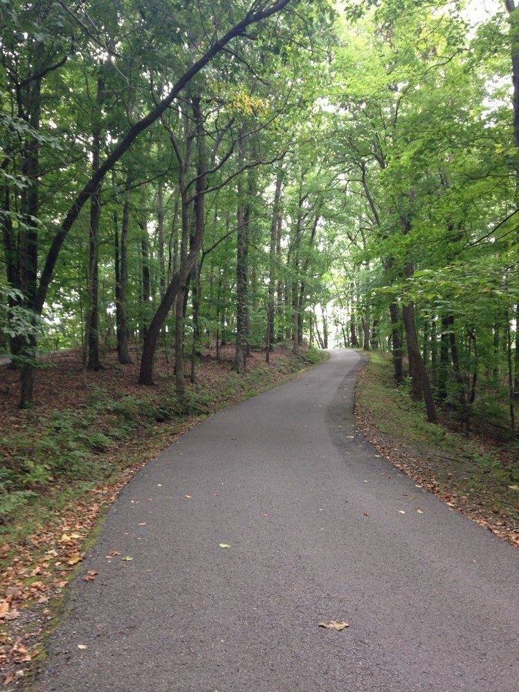 Dog Friendly Walking Trails Nashville