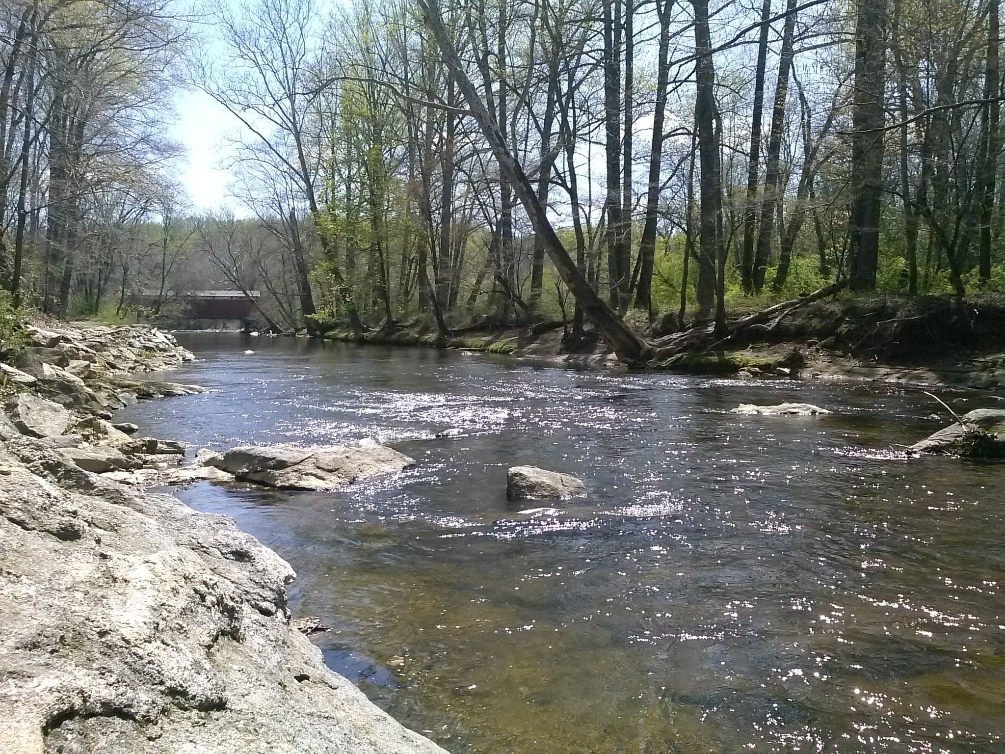 Best Trails in Fair Hill Natural Resource Management Area