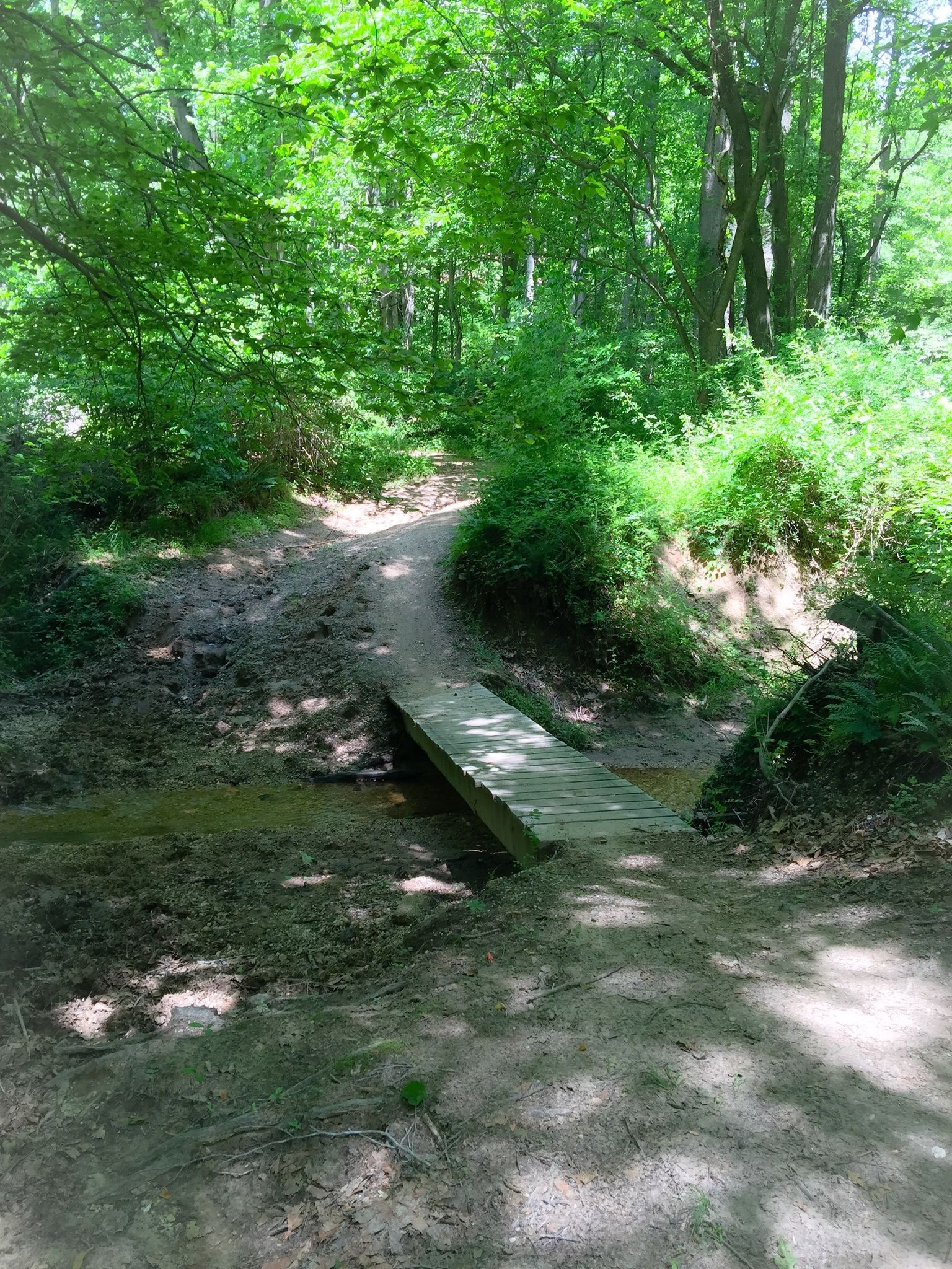Best Trails In Rosaryville State Park Maryland Alltrails