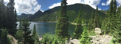 Custer Gallatin National Forest