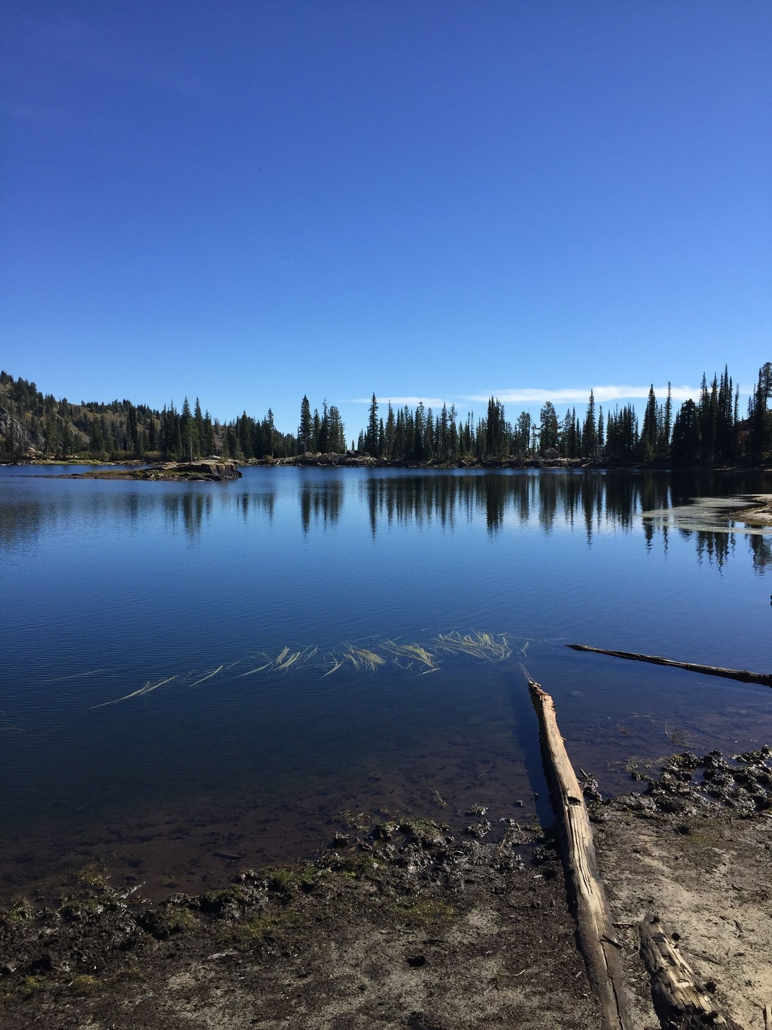 Southern Phone Reviews >> Blue Lake Trail - Idaho | AllTrails.com