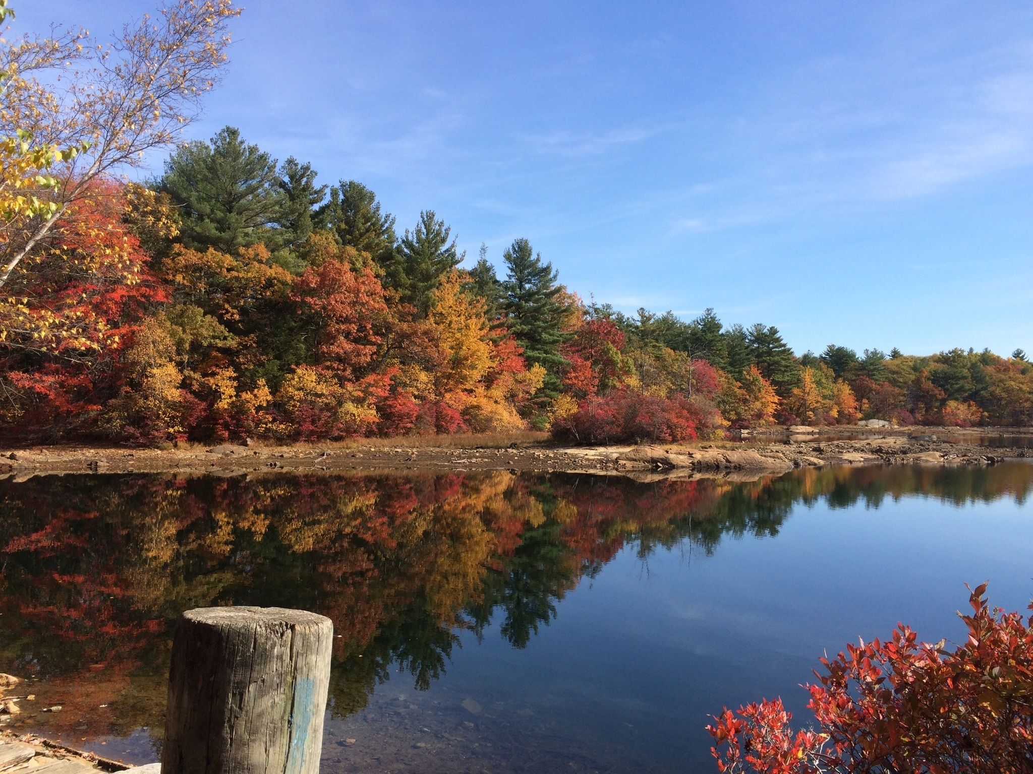 Pearce lake and upper pond trail massachusetts for Kid friendly fishing near me