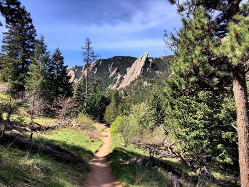 Groovy Best Trails Near Boulder Colorado Alltrails Complete Home Design Collection Barbaintelli Responsecom