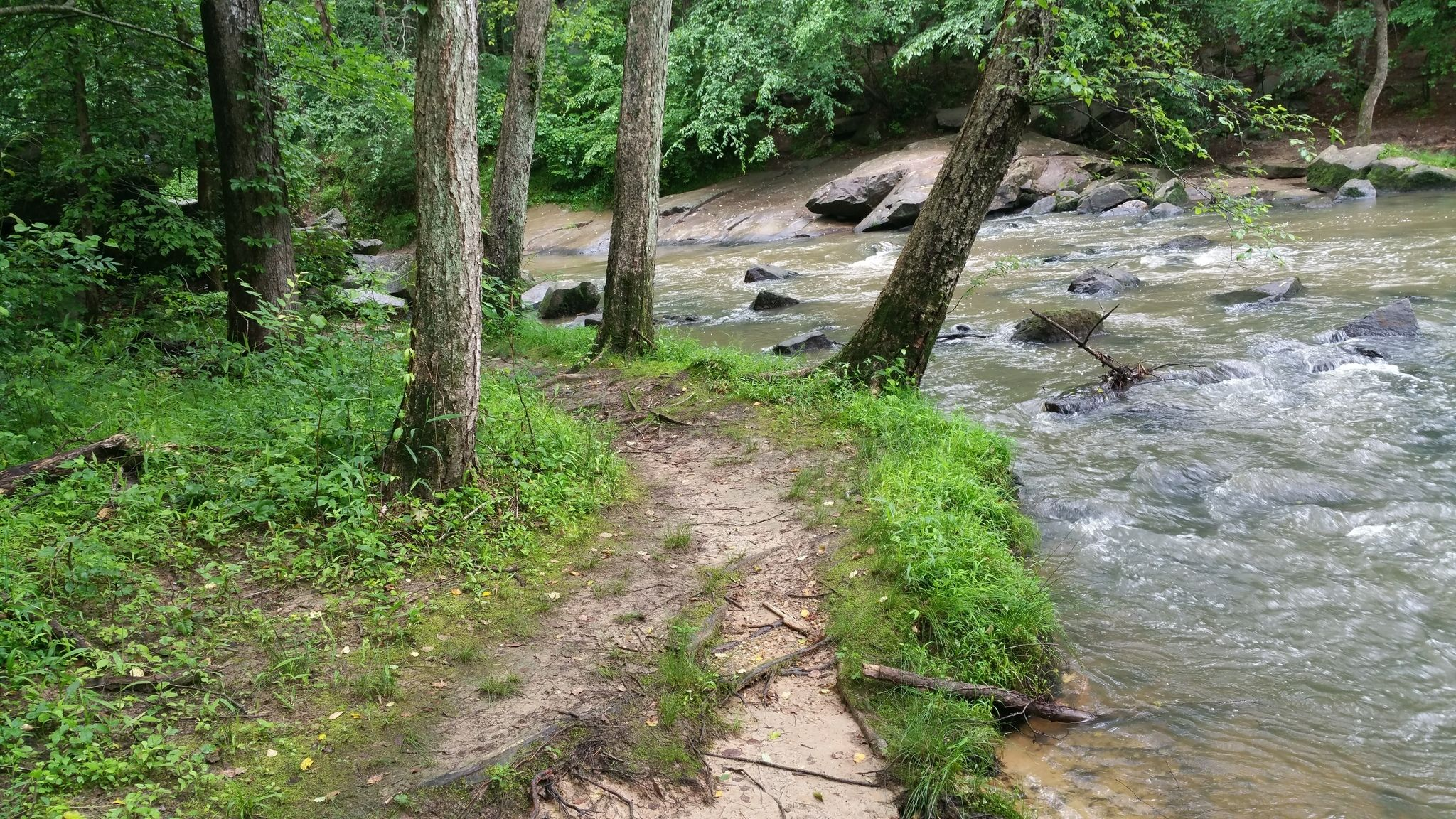 Best Trails in William B. Umstead State Park - North ... on crabtree bike trail map, wilson trail map, keller trail map, walker trail map, gardner trail map, black creek mississippi trail map, caldwell trail map, underdown trail map, woods trail map, burke trail map, morrison trail map, cherry trail map, crowder's mountain trail map, nelson trail map, hunt trail map, hunter trail map, horton trail map, butler trail map,