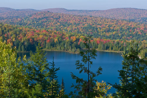 Mauricie National Park