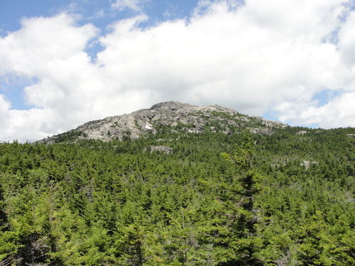 best trails in monadnock state park new hampshire alltrails