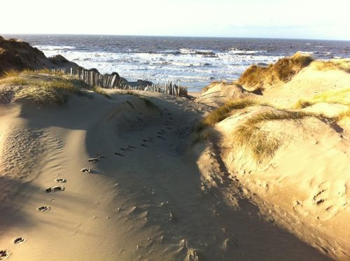 Best Trails In Ainsdale Sand Dunes Nature Reserve Merseyside England Alltrails