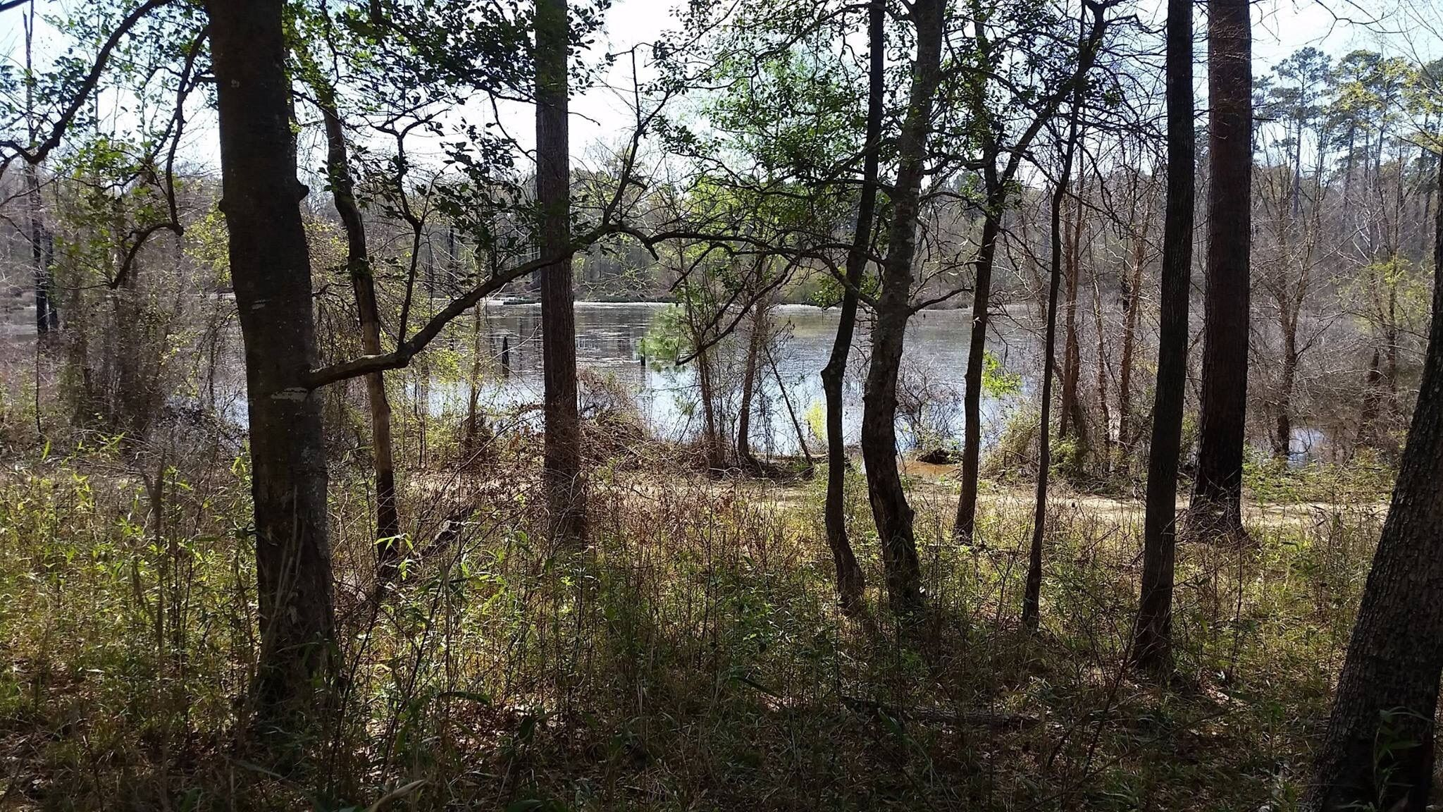 best trails in davy crockett national forest texas alltrails rh alltrails com davy crockett national forest hunting davy crockett national forest fishing