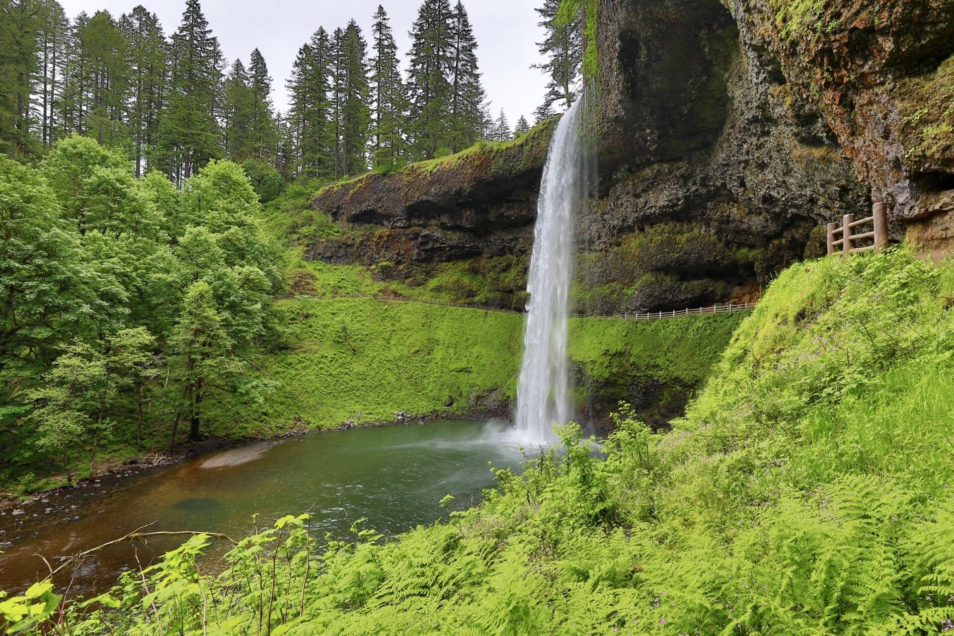 Silver Falls Ohio Map.Best Trails In Silver Falls State Park Oregon Alltrails