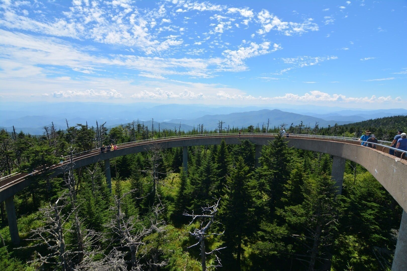 Clingmans Dome Observation Tower Trail - Tennessee | AllTrails