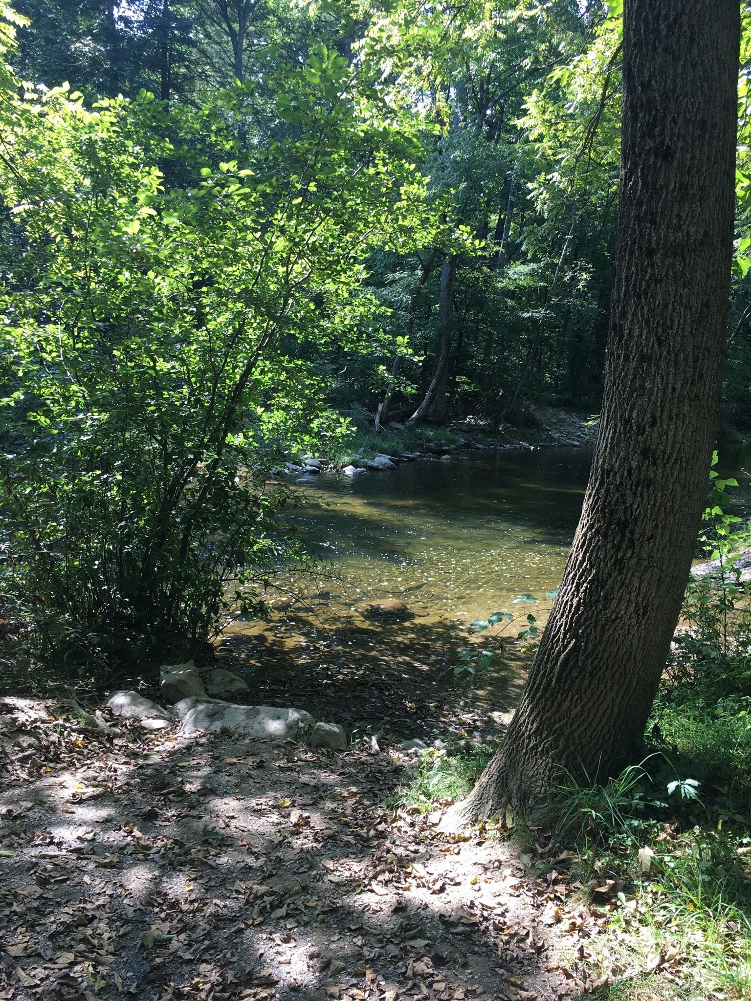 Best Trails In Jacobsburg State Park Pennsylvania