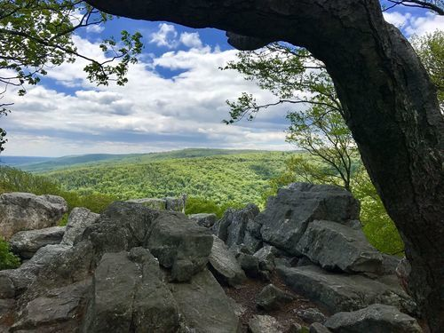 Catoctin Mountain Extended Loop Trail