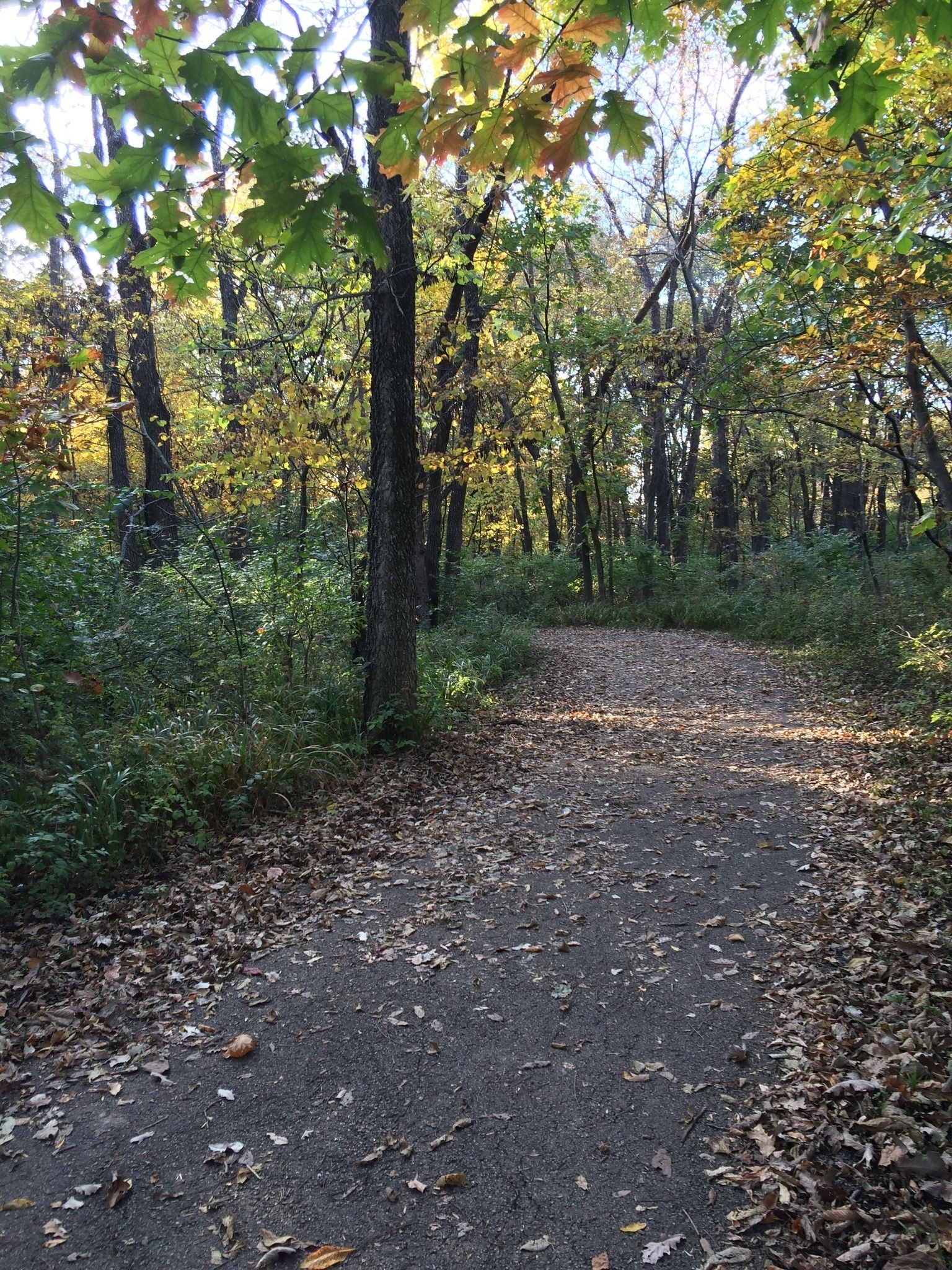 Best Trails Near Paola Kansas Alltrails