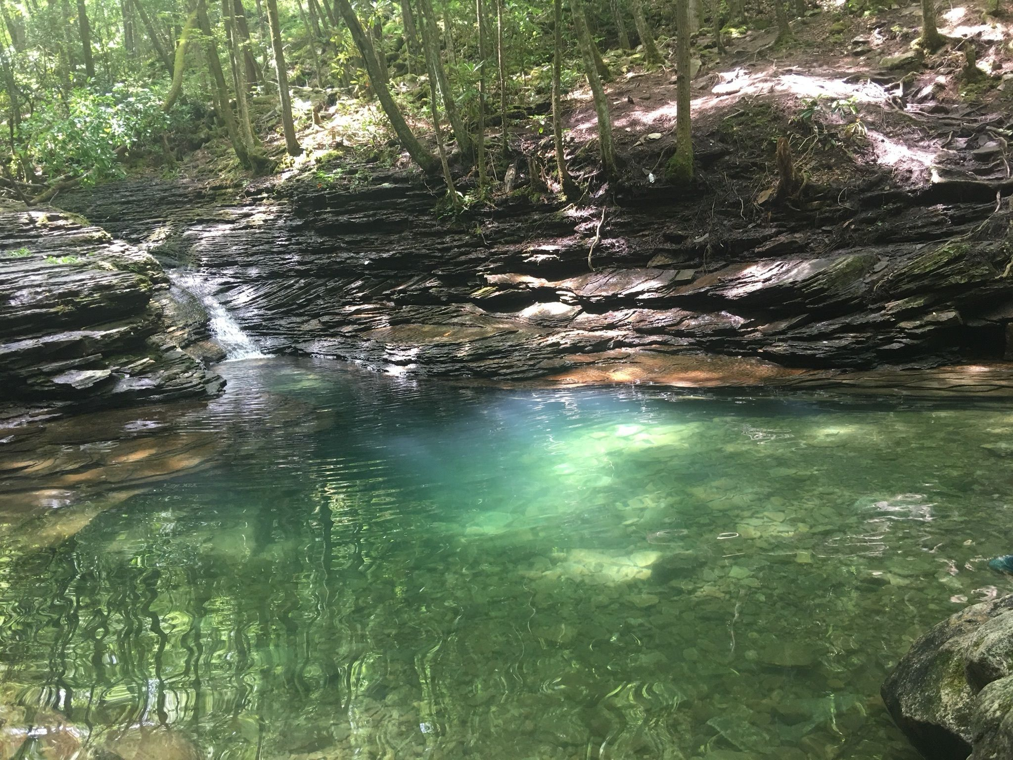 Devils Fork And Devils Bathtub Loop Trail Virginia