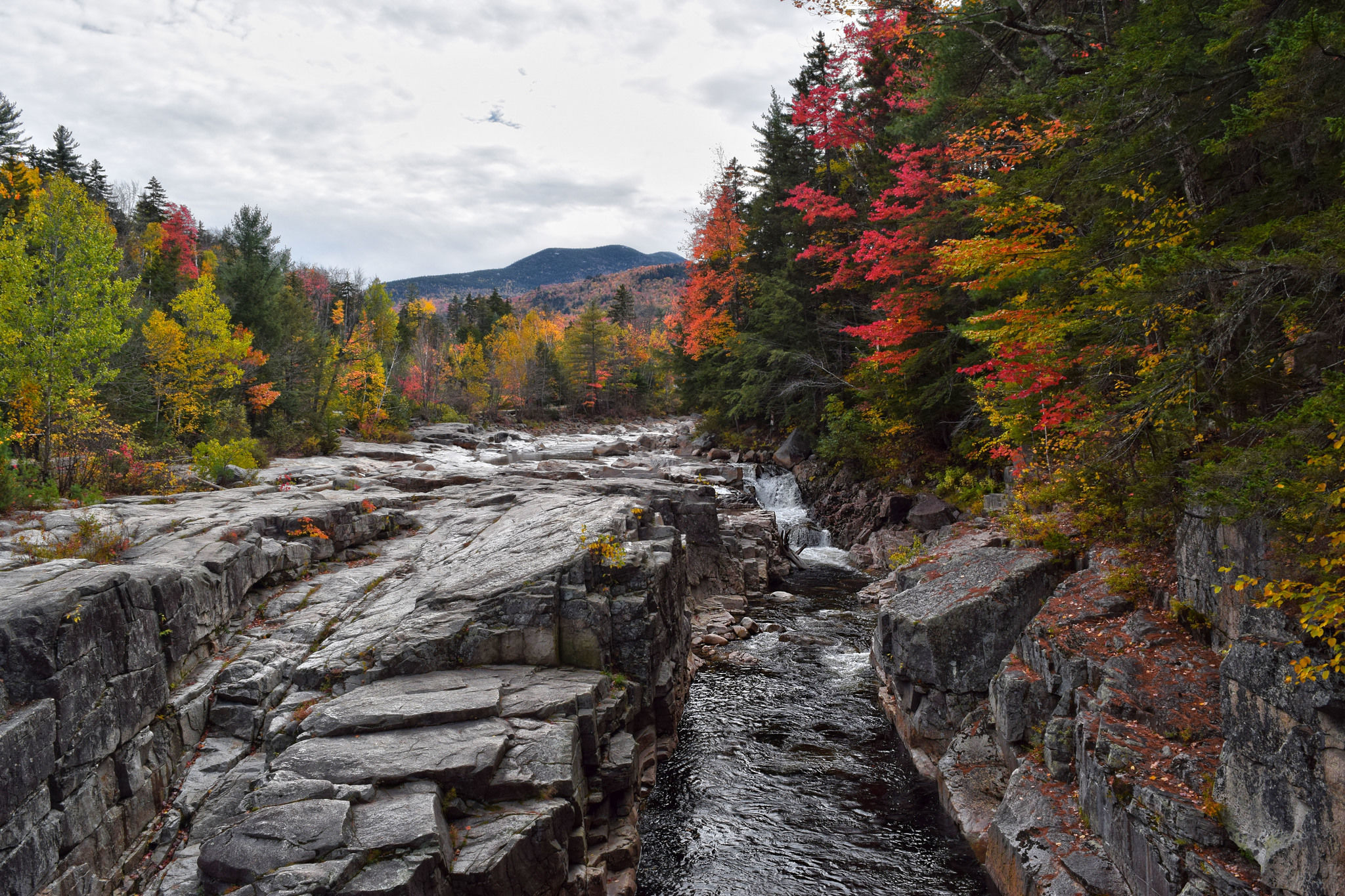 Photos of Rocky Gorge Scenic Area Trails - New Hampshire | AllTrails