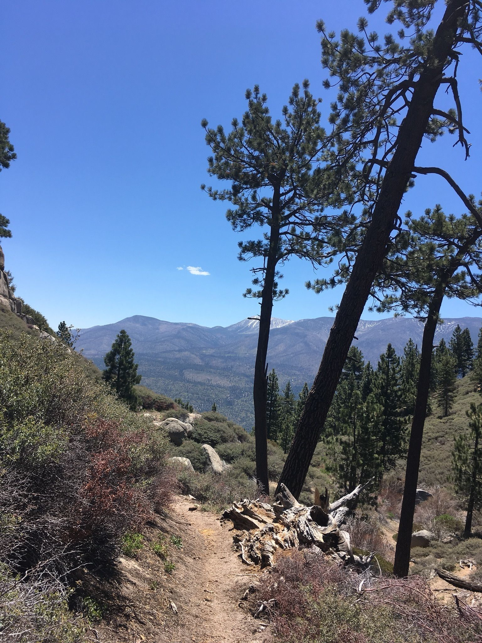 best trails in san bernardino national forest