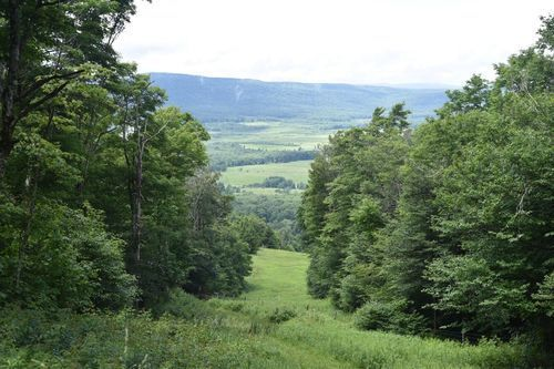 Canaan Valley State Park