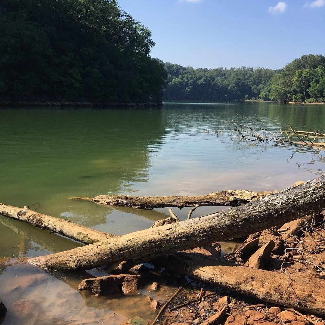 Warriors Path State Park: Devil's Backbone And Fall Creek - Tennessee
