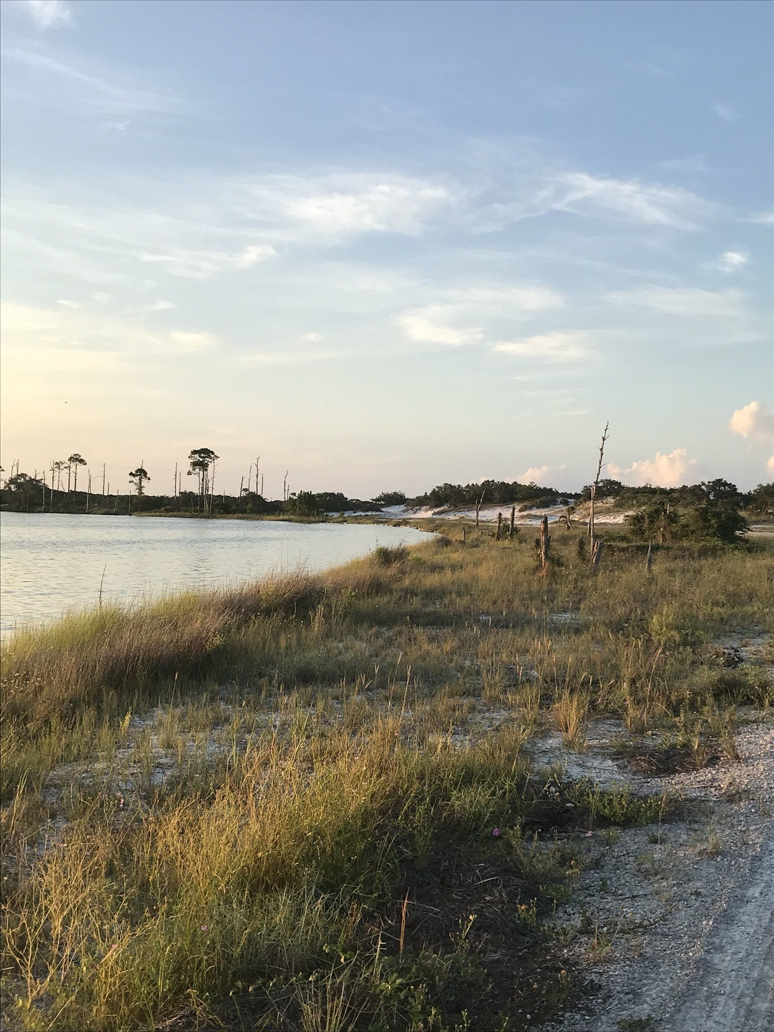 Availibility For Dune Refuge Gulf Shores Al Vacation Rental: Best Trails Near Gulf Shores, Alabama