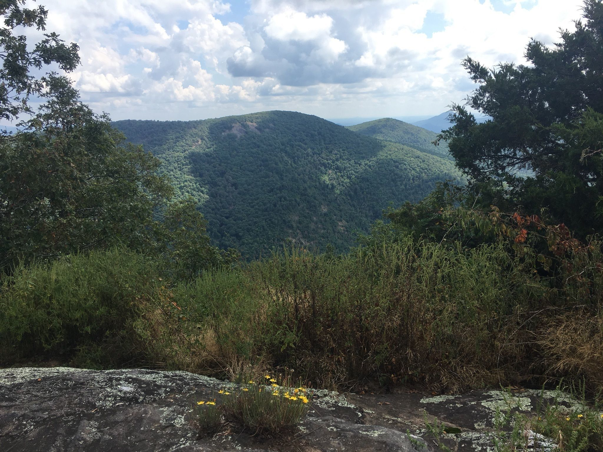 Best Backpacking Trails in Georgia | AllTrails