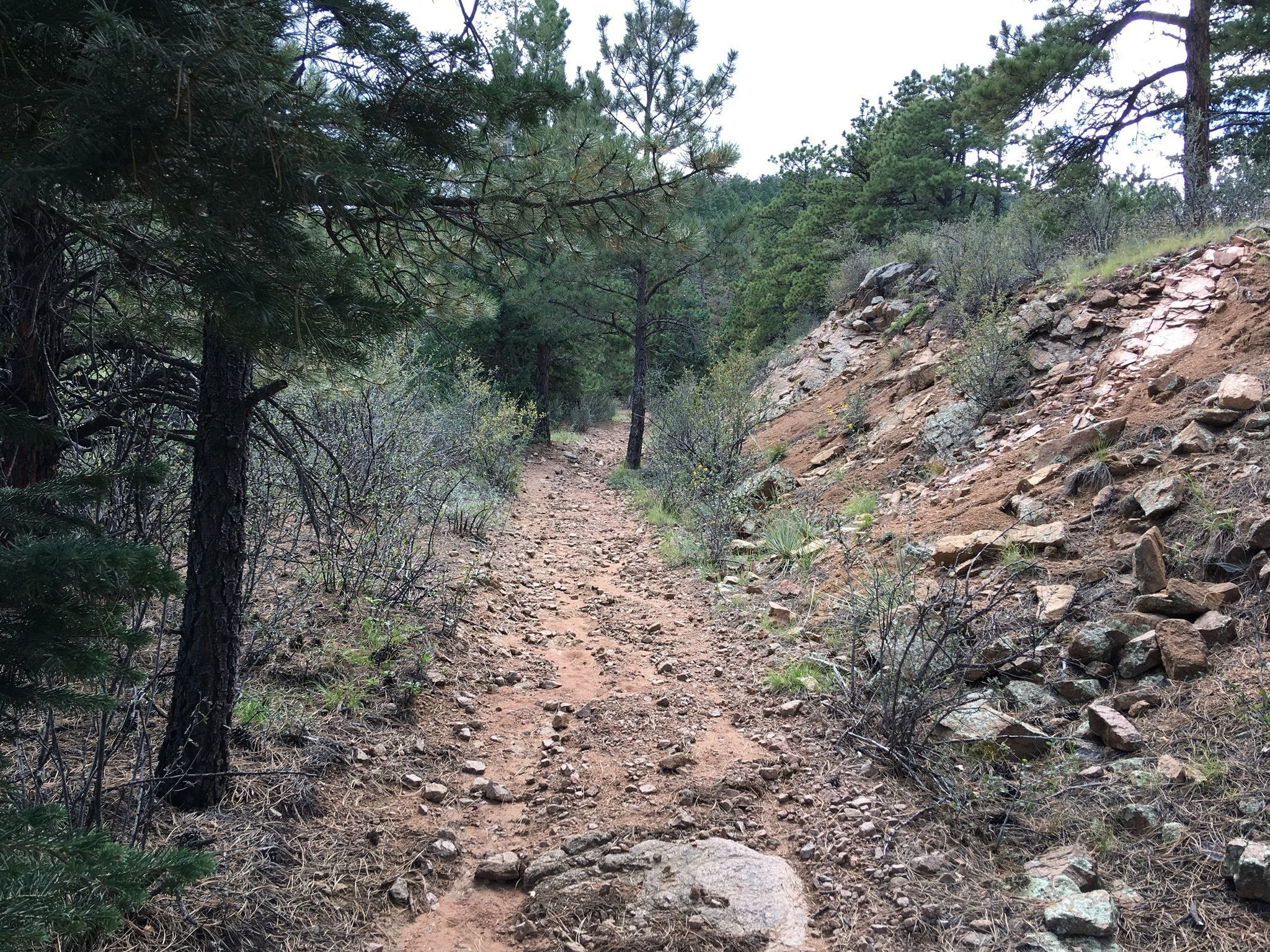 Best Trails Near Beulah Colorado Alltrails
