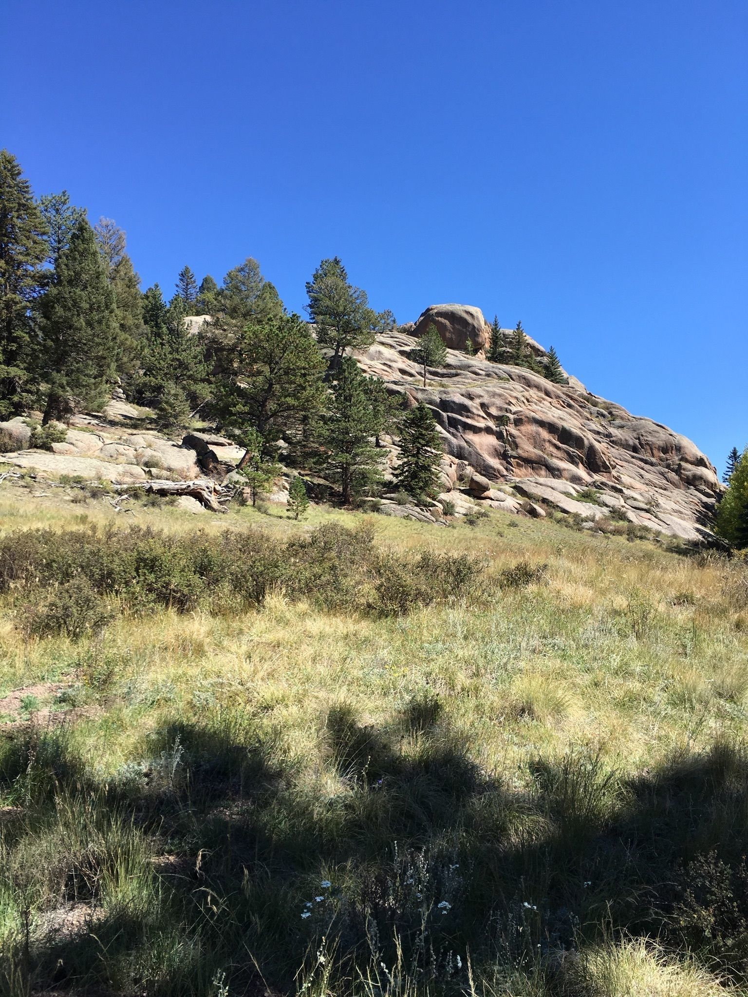 FLORISSANT FOSSIL BEDS NATIONAL MONUMENT - GO HIKE COLORADO