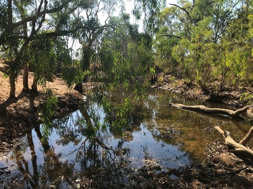 Charnley River Artesian Range Sanctuary