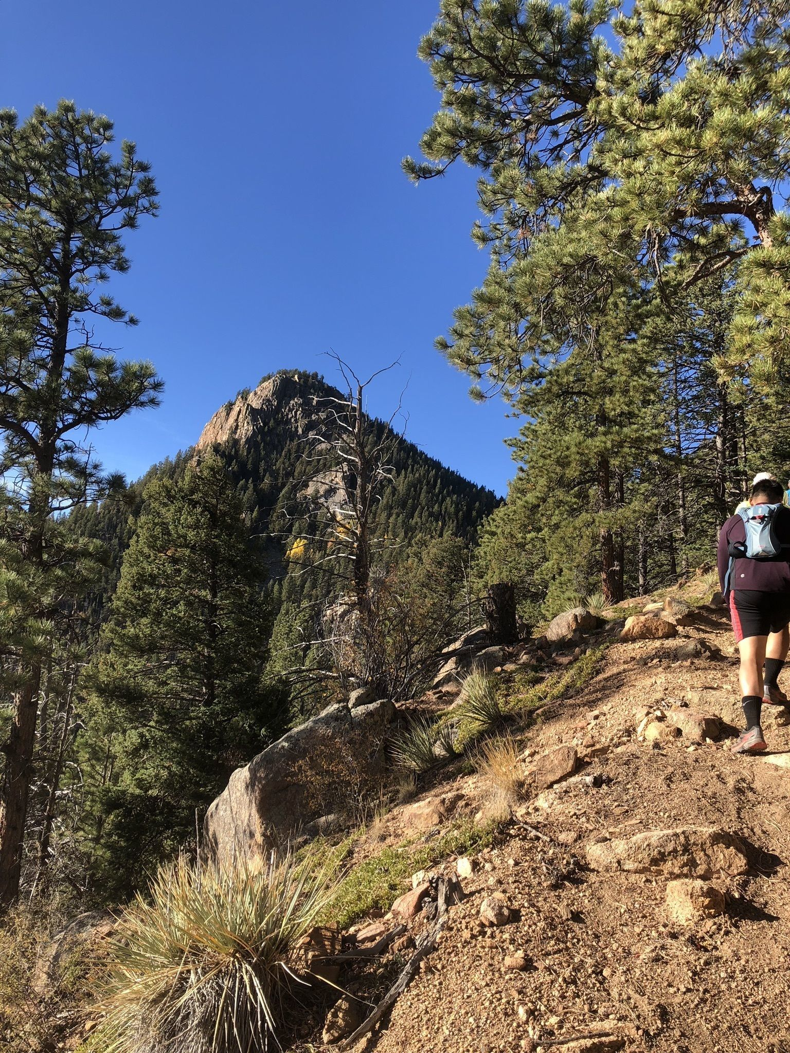 Cheyenne Canyon to Mount Rosa - Colorado | AllTrails