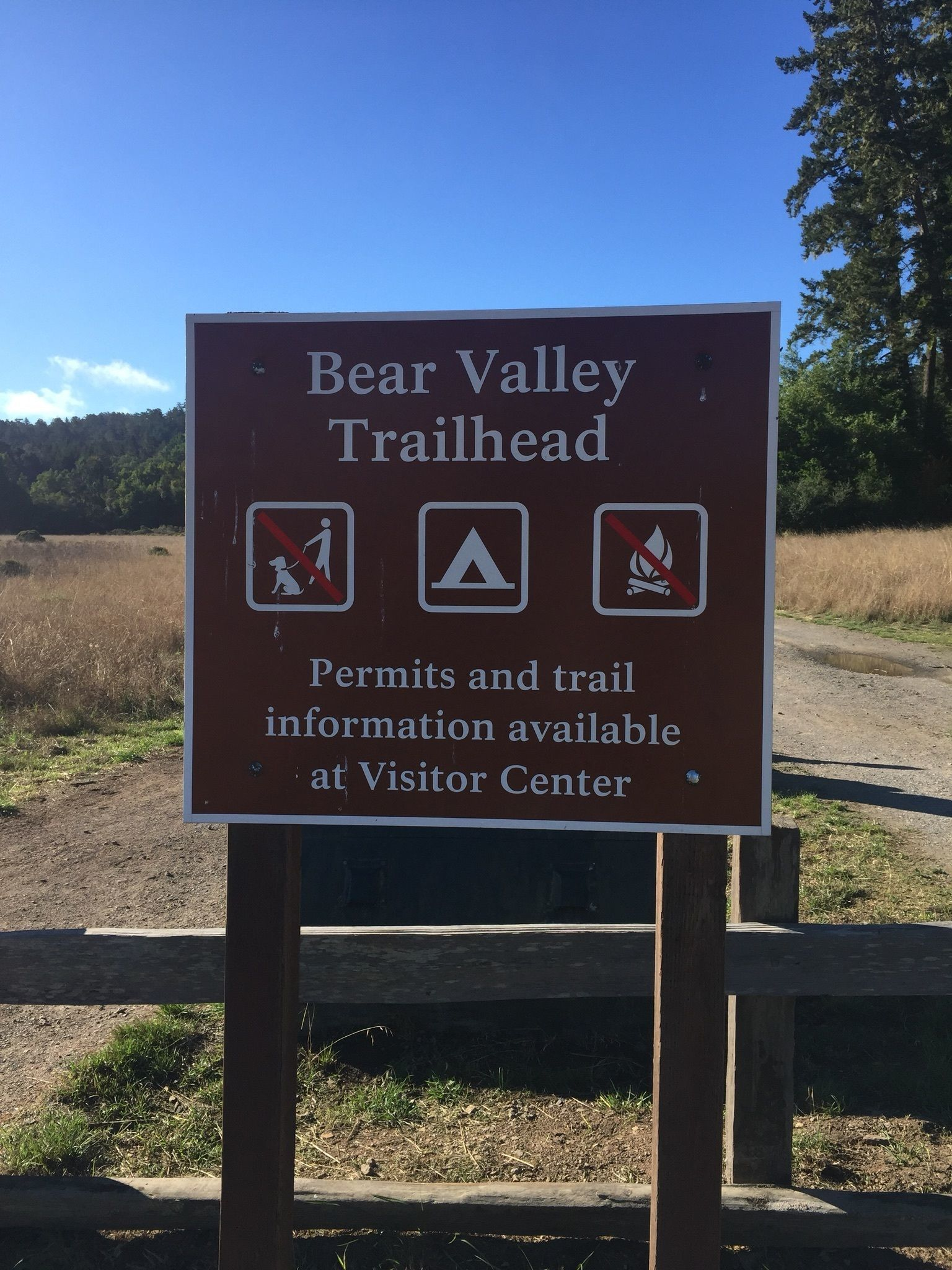 Alamere Falls and Wildcat Camp via Bear Valley Trail