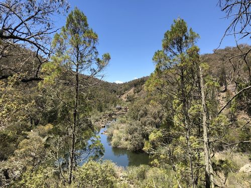 Molonglo Gorge Nature Reserve