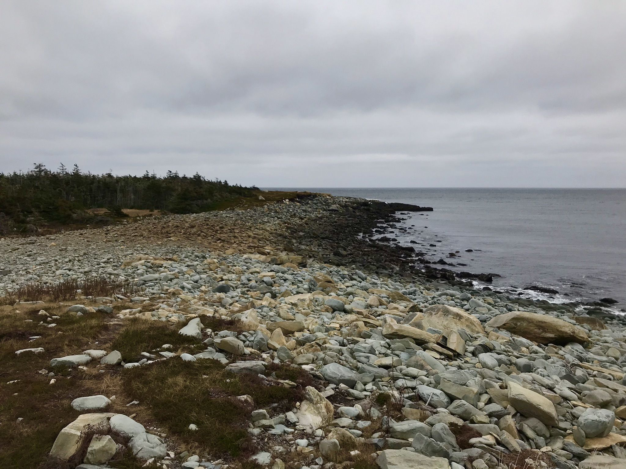 Martinique Beach Trail - Nova Scotia, Canada | AllTrails