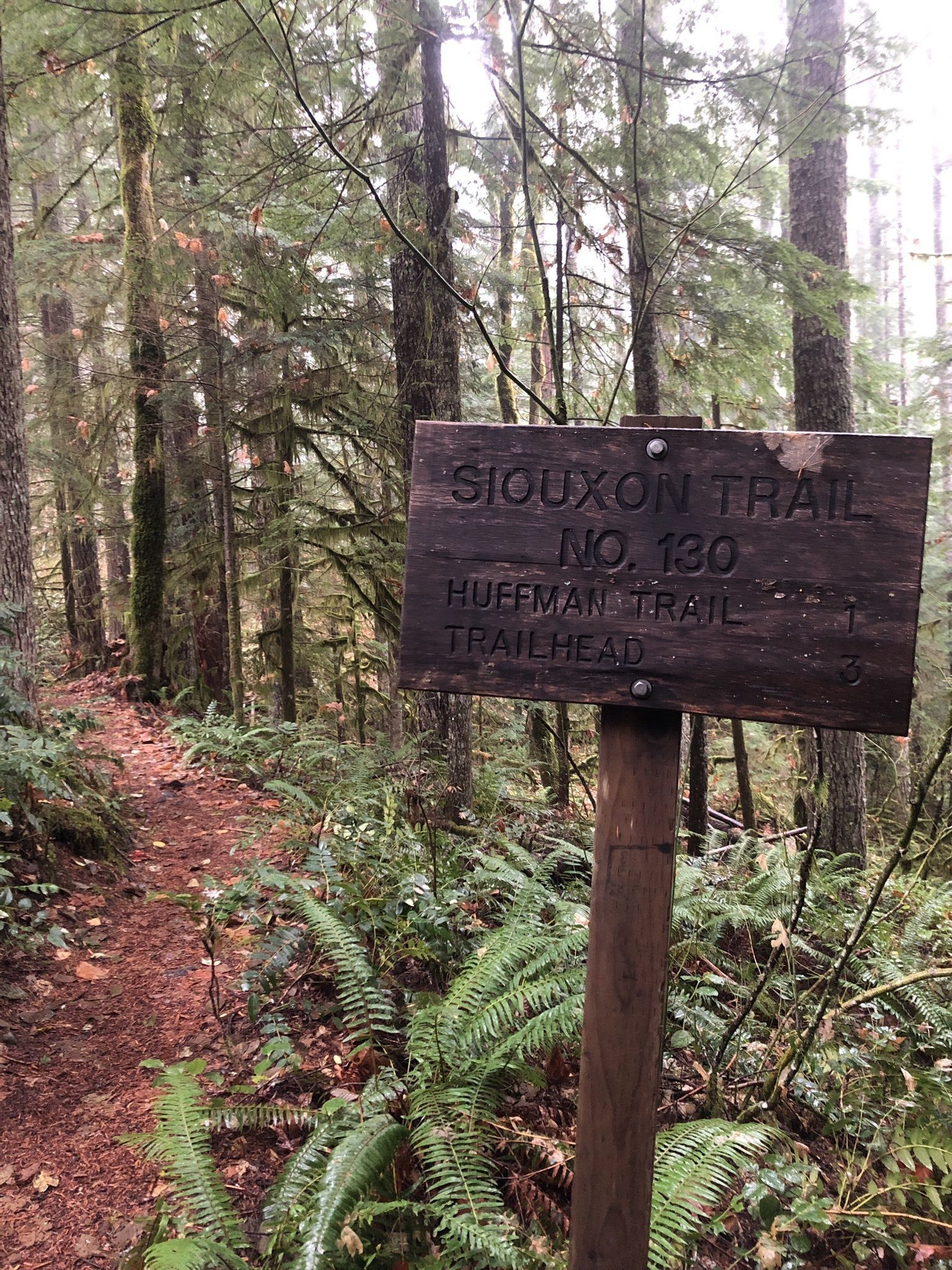 Gifford Pinchot National Forest: Camping & Hiking - HoodMWR