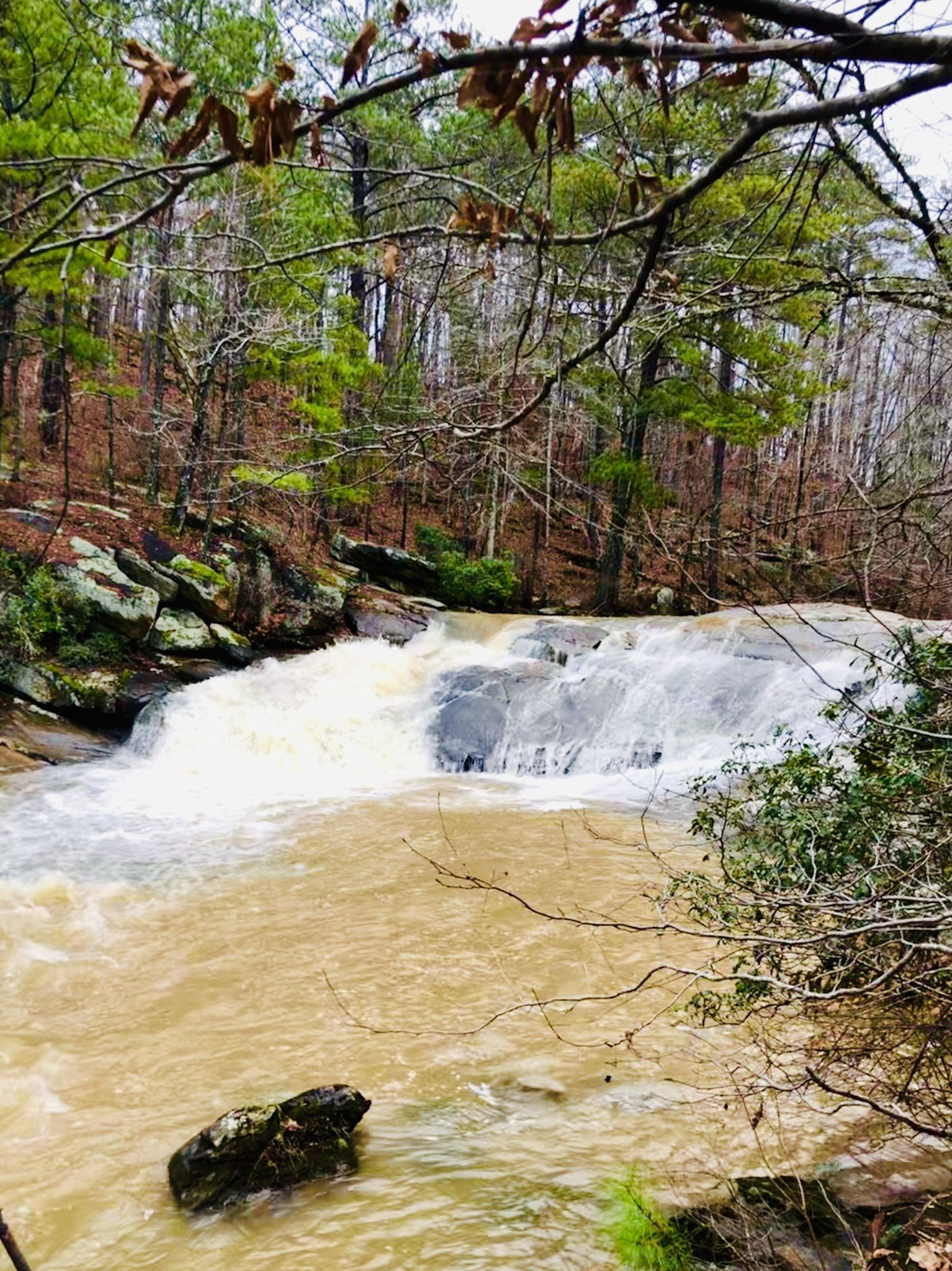 Best Waterfall Trails In Georgia Alltrails